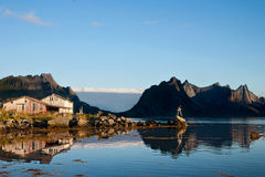 Morning mood in Reine Royalty Free Stock Photography