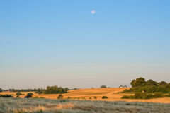 Morning moon over fields Stock Photos