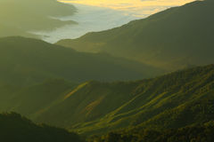 Morning  mountain  fog. In nan province of thailand Stock Image