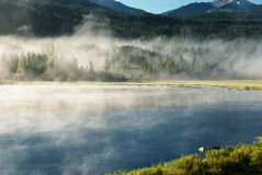 Morning on mountain lake Royalty Free Stock Images