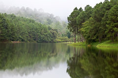 Morning on mountain lake. Morning on mountain lake, Thailand Stock Photos