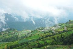 Morning mountain landscape with waves of fog and cloudy sky. Royalty Free Stock Photography