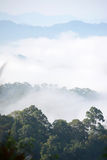 Morning mountain mist Stock Photography