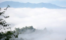 Morning mountain mist Stock Photos