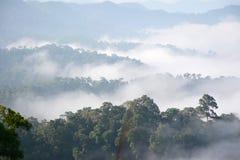 Morning mountain mist Royalty Free Stock Photos