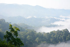 Morning mountain mist Stock Image
