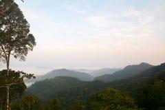 Morning mountain mist Stock Photography