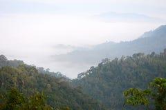 Morning mountain mist Royalty Free Stock Photo