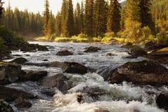 Morning on mountain river Royalty Free Stock Photos