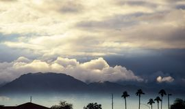 Morning mountain scene in the silhouette palm Arizona, USA. Early morning mountain scene in the silhouette palm Arizona, USA stock image