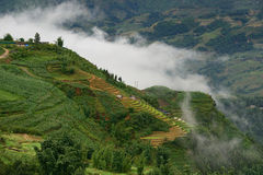 Morning in the mountainous Sapa Royalty Free Stock Photos