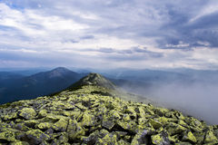 Morning mountains in the fog. Morning Carpathians mountains in the fog. Ukraine stock photos