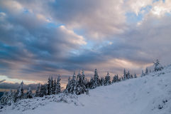 Morning in mountains at winter Royalty Free Stock Images