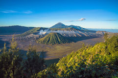 Morning Mt Bromo Stock Image
