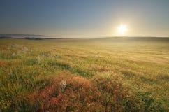 Morning nature landscape Royalty Free Stock Photo