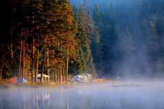 Morning near camp Stock Photography