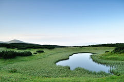 Morning near small mountainous pond Stock Images