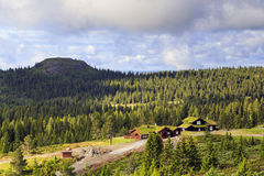 Morning Norwegian landscape Royalty Free Stock Image