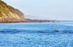 Morning ocean view from shore (Bay of Biscay). Stock Photography