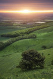 Morning over rolling English countryside landscape in Spring Stock Image