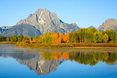 Morning at Oxbow Bend Stock Photography