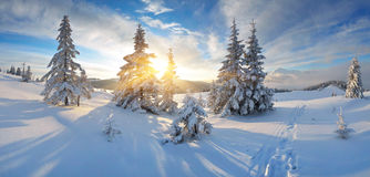 Morning panorama of mountains Royalty Free Stock Images