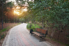 Morning in park. Royalty Free Stock Photo