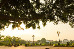 Morning in the park. Morning sunlight through the ancient trees in the park Buon Me Thuot, Daklak Royalty Free Stock Photos