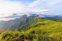 Morning in Phu Chi Fa Forest Park Stock Photo