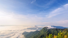 Morning in Phu Chi Fa Forest Park Royalty Free Stock Photo