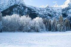A morning of polar ice in the forest under the mountains stock image