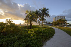 Morning at Pompano Beach park Royalty Free Stock Images