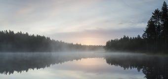 Morning in pond Stock Photo