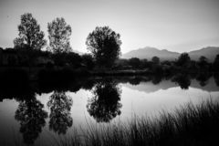 Morning Pond Reflection Black and White stock photos