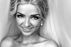 Morning portrait of beautiful bride Royalty Free Stock Image