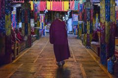 Morning Puja at Samstanling Gompa in Ladakh, India Stock Photography