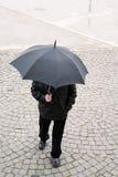 Morning rain Royalty Free Stock Photos