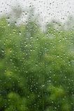Morning rain, drops of water on a window glass background, copy space.  Stock Images