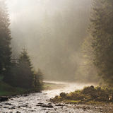 Morning ray of light on the river. Royalty Free Stock Photo