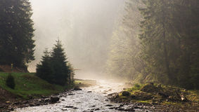 Morning ray of light on the river. Panorama Royalty Free Stock Photography