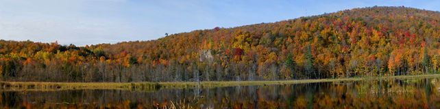 Free Morning Reflection On Lake Royalty Free Stock Image - 11497716