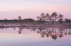 Morning reflection Royalty Free Stock Images
