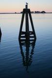 Morning Reflection Stock Image
