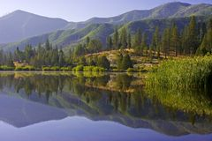 Morning reflections. Reflections in a mountain lake in early morning Royalty Free Stock Photo