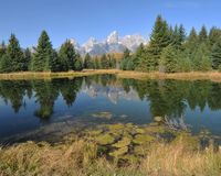 Morning Reflections - The Tetons Royalty Free Stock Photo