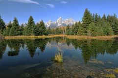 Morning Reflections - The Tetons Royalty Free Stock Photography