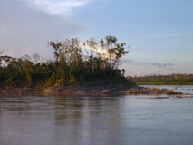 Morning at the rio amazonas Royalty Free Stock Image
