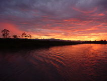 Morning at the rio amazonas Royalty Free Stock Photography