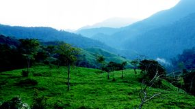 Morning rise in Sierra Nevada de Santa Marta, Colombia Stock Image
