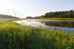 Morning on the river bank in the village. Royalty Free Stock Photo